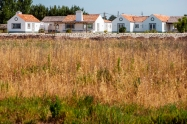 Typical Homes in Comporta