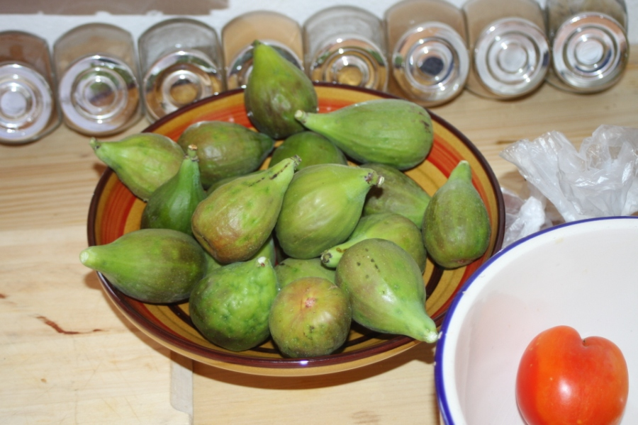 Figs for Breakfast Brejos da Carregueira