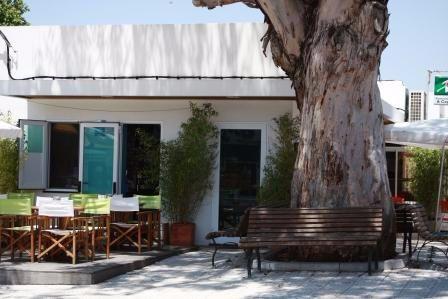 Eucalyptus cafe